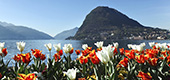 LUXURY CAR RENTAL IN LUGANO